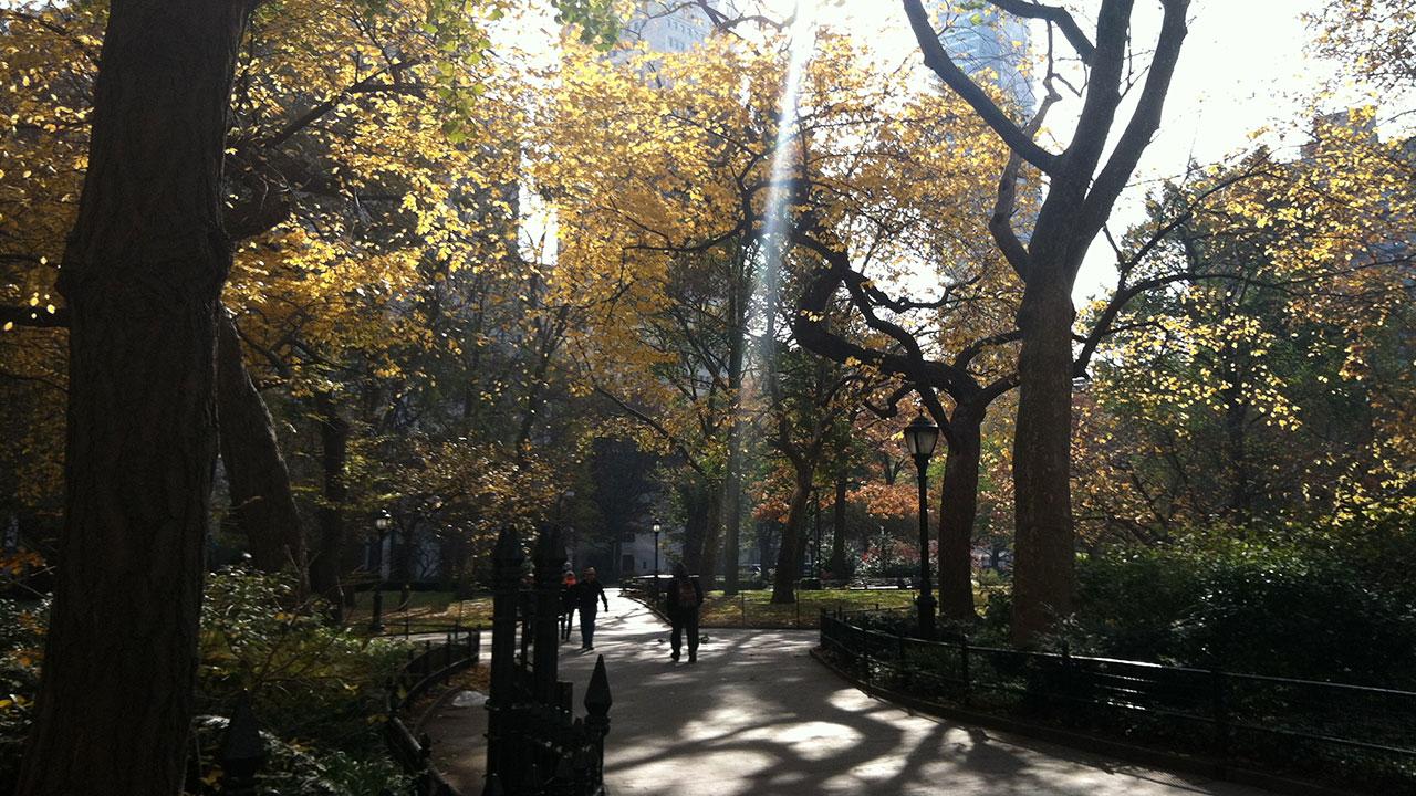 Onsite, New York, 2013